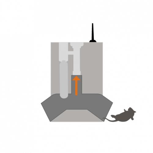 effektiv rotte og mus overflade fælde - intet slipper væk - ratel